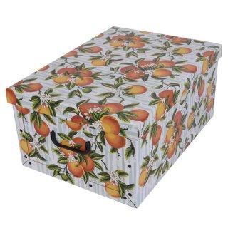 Aufbewahrungsbox Maxi Fruit Orange mit Deckel/Griff 51x37x24cm Allzweckkiste Pappbox Aufbewahrungskarton Geschenkbox